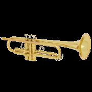 آموزشگاه-موسیقی-شمال-تهران-ناردونه-trumpet-آموزش-ترومپت