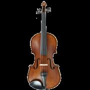 آموزشگاه-موسیقی-شمال-تهران-ناردونه-violin-آموزش-ویولن